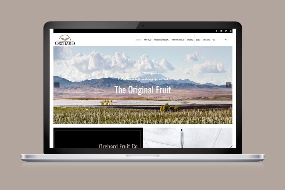 diseno web Orchard SinPalabras
