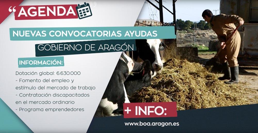 producción TV Aragón productora SinPalabras