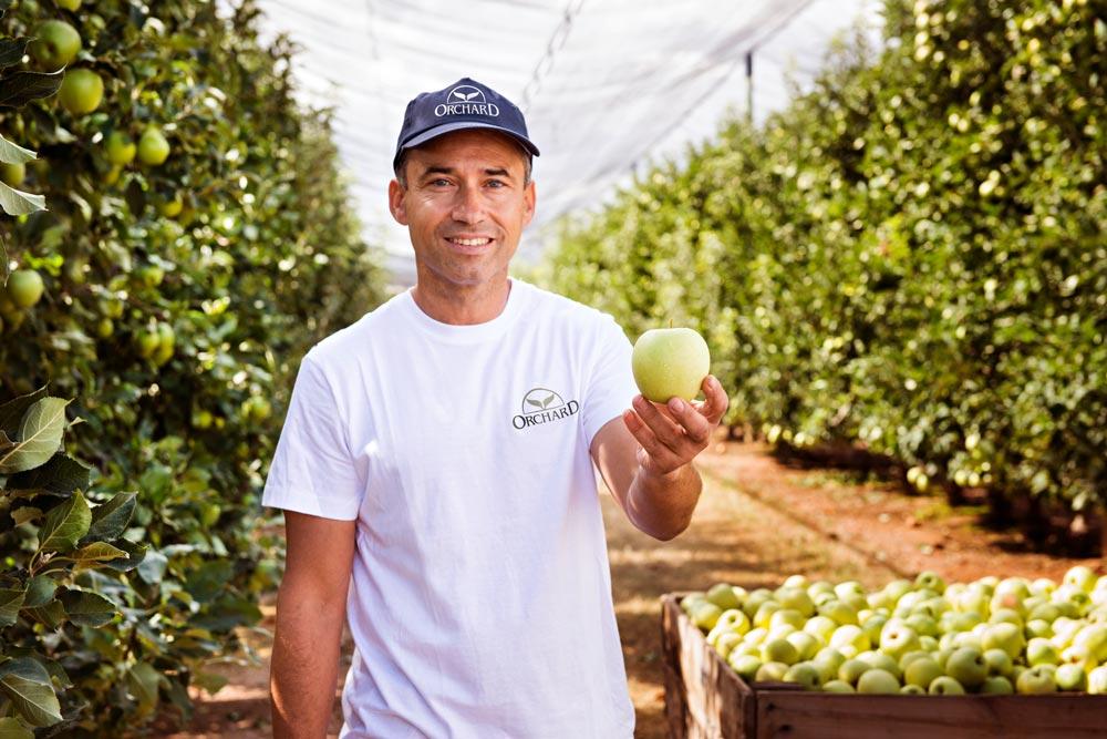 sesión fotografía producto manzanas SinPalabras Creativos