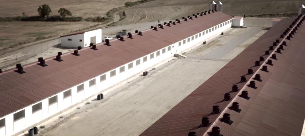 video corporativo grabación con dron SinPalabras