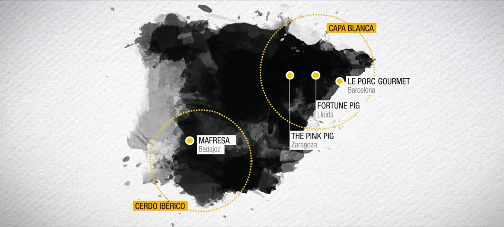 video corporativo infografía SinPalabras